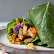 Kimchi Marinated Tempeh Wraps-7