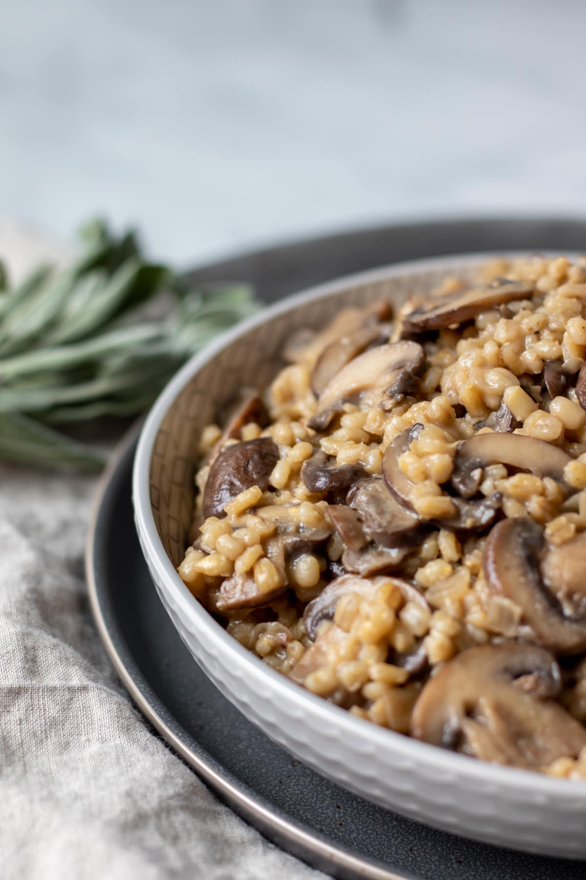 creamy barley orzotto in a bowl