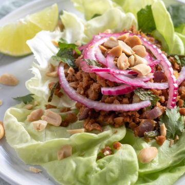 Vegan Thai Larb with Seitan topped with quick-pickled red onion and peanuts