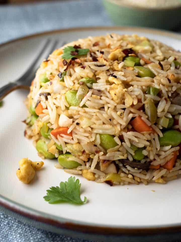serving of fried rice with vegetables on a plate.